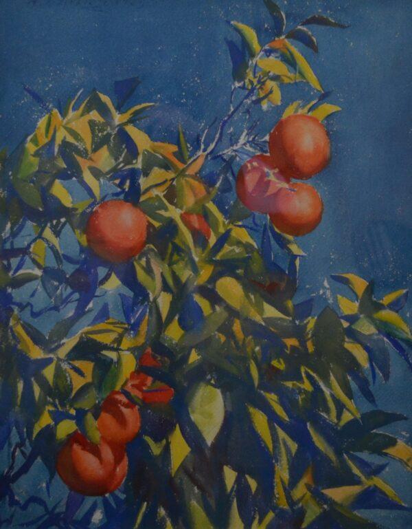 Orange Tree by Aidan Lassell Ripley